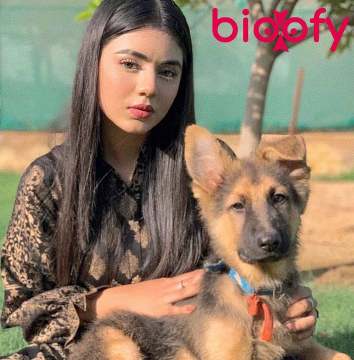 Areeka Haq bioofy
