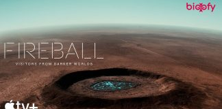 Fireball Visitors from Darker Worlds